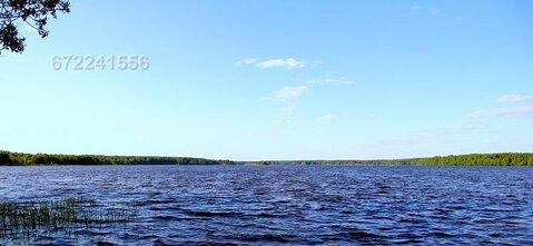 Участок в д. Головино, рядом р. Волга, лес. Кимрский район - Фото 1