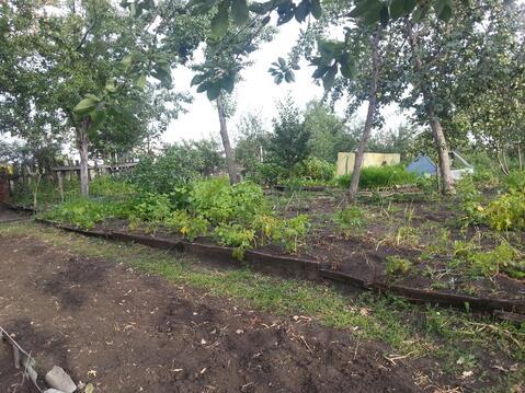 Сад девять соток в Копейске, Пластмасс-1 - Фото 5