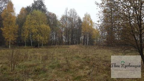 Участок 24 сотки на опушке в деревне Старокурово Ступинский район - Фото 3