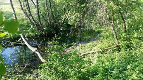 Отличный участок 22 сотки, Сосенское с.п, вблизи дер.Летово - Фото 5