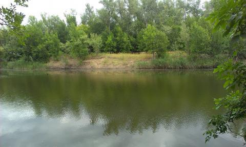 Земельный участок на берегу р. Ахтуба - Фото 3