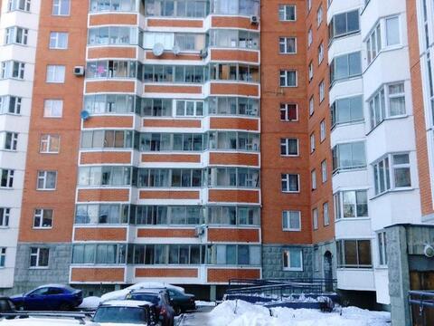 Сдам 2-комнатную квартиру в п.Голубое - Фото 1