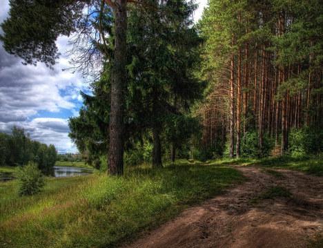 Орехово + 5 км , д. Иваново - Фото 2