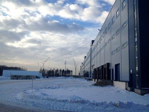 Сдам складское помещение 3200 кв.м, м. Комендантский проспект - Фото 3