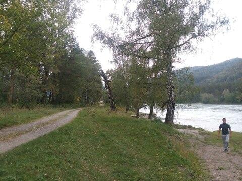 Продается уникальный участок на берегу р.Катунь - Фото 1