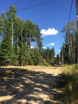 Предлагаем участок 20 соток в ДНП Медное озеро в 18 км от КАД - Фото 2