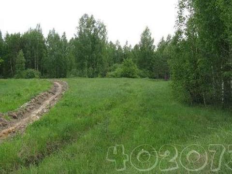 15 соток в д.Иваково, Клепиковского района, Рязанской области. - Фото 2