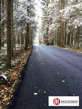 Прилесный участок 11 соток, 38 км от МКАД по Киевскому ш. - Фото 1