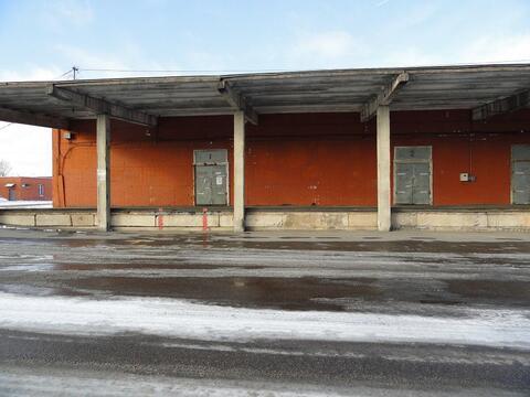 Аренда неотапливаемого складского помещения 3618,8 кв.м - Фото 1