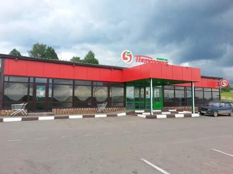 Сдается торговое помещение 70 кв.м, село Атепцево - Фото 2