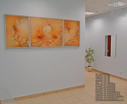 Офис 482м с отделкой - Фото 4
