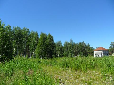 Просторный участок 22 сотки у леса - Фото 2
