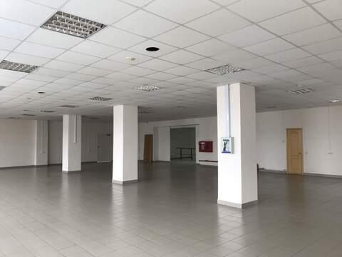 Сдам торговое помещение 346 кв.м, Пермь - Фото 5