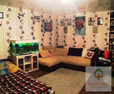 Квартира пр.просвещения - Фото 1