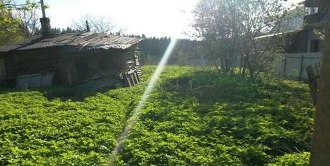 Дом в д. Мисирево 25 сот ИЖС - Фото 3