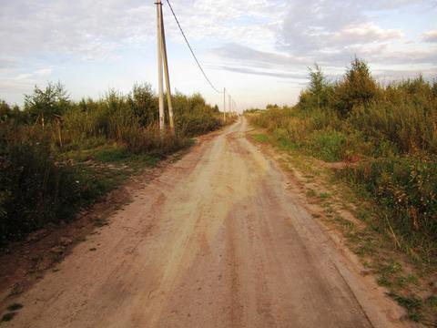 Участок 15 сот в днп в районе деревни Новинки, Дмитровского р-на. - Фото 4