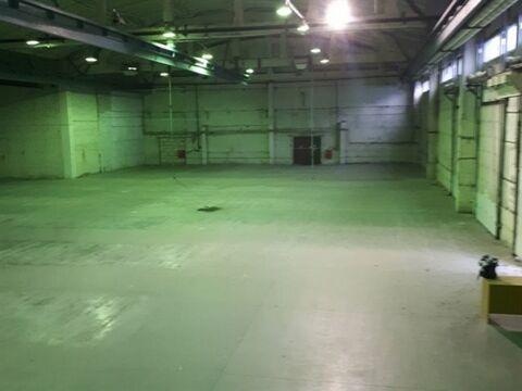Сдам производственное помещение 2380 кв.м, м. Комендантский проспект - Фото 4