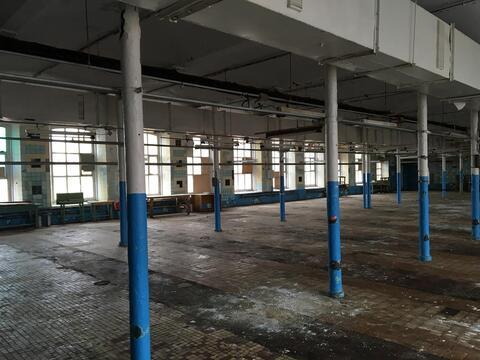 Продам производственный комплекс 77 000 кв.м. - Фото 3