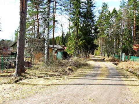 Продажа дачи на окраине поселка Комарово - Фото 5
