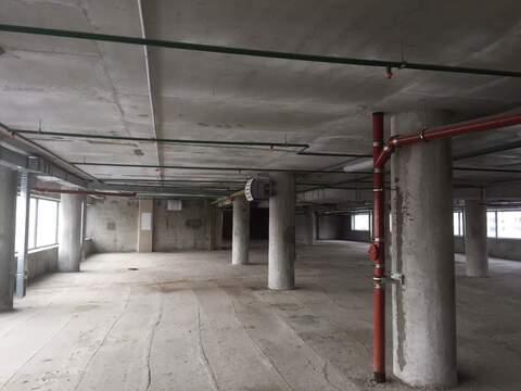 Помещение под склад 1012.3 кв.м - Фото 4