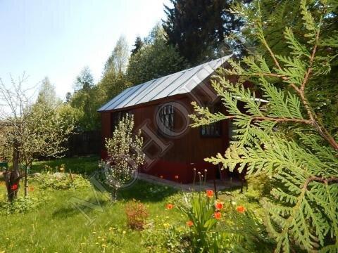 Дача 40 кв.м. деревня Кощейкино Пушкинского района СНТ Связист - Фото 2