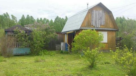 Продается дача с участком в деревне Курочкино - Фото 5