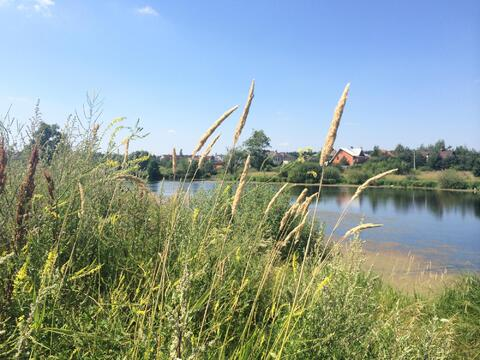 Продаю участок с выходом к озеру. Минское ш. 20км от МКАД - Фото 2