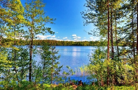 Склоны Коробицыно , озеро Глубокое и Вишнёвское - Фото 3