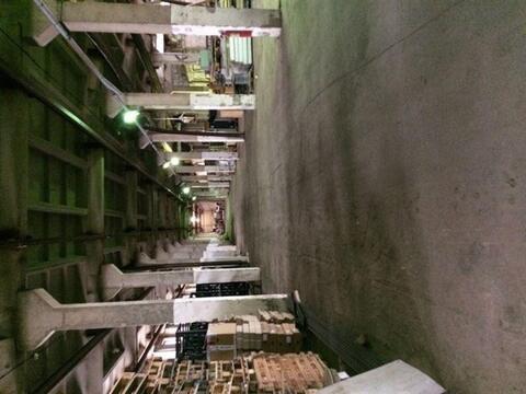 Сдам складское помещение 2800 кв.м, м. Проспект Ветеранов - Фото 2
