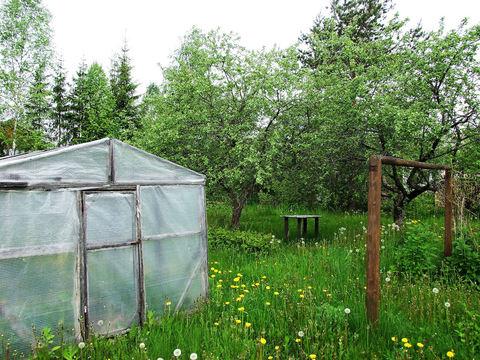 Продажа дачи в обжитом садоводстве - Фото 5