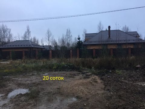 Ломоносовский район , Низино , СНТ Фауна , участок 20 соток - Фото 3
