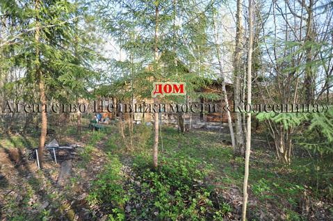 Ореховка. Лесной участок 20 соток с 2-этажным срубом дома, срубом бани - Фото 1