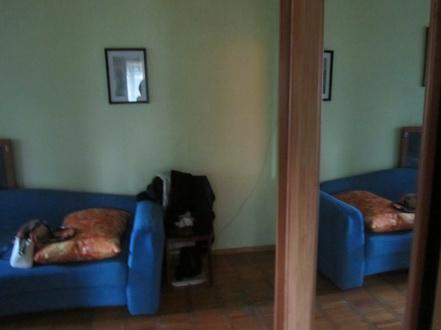 Продаю 2 комнатную квартиру зжм пр. Стачки-Зорге - Фото 2