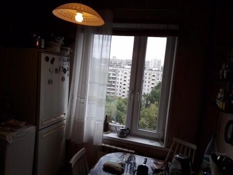 2-к Квартира, Фестивальная, 65 - Фото 3