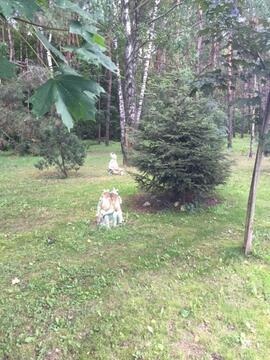 Шикарный участок в Рассказовке.ИЖС.41 сотка - Фото 1