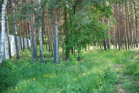 Лесной участок - 10 соток в Нижнеисетском районе - Фото 2