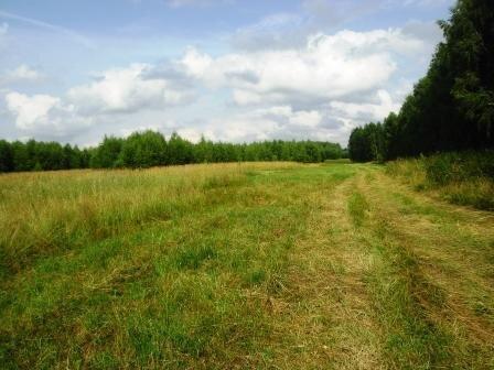 Усадьба 8 га. в 90 км от Нижнего Новгорода - Фото 1