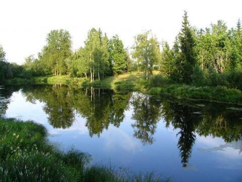 Вблизи Бережка , участок в Былинном - Фото 3