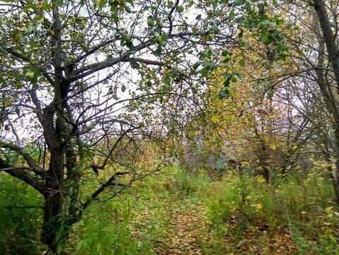 Продается участок. , Москва г, поселок Липки - Фото 4