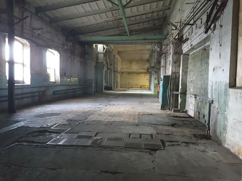 Сдам склад/производство 1эт. 1330м. h=11м. Красное Село - Фото 3