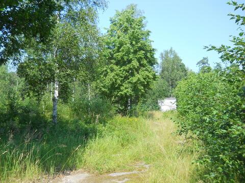 продажа участка в ушково курортного района санкт-петербурга под дачное строитель...