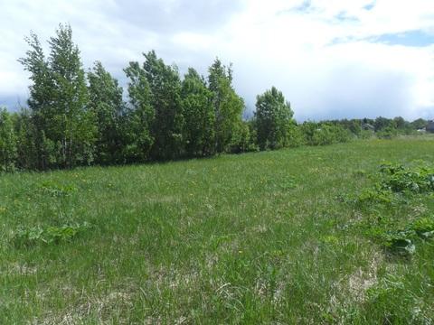 Земельный участок 30 сот (знп;лпх) в п. Буденовец от МКАД 68 км - Фото 4