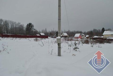 Продажа земельного участка 21 сотка в дер. Пожитково - Фото 5