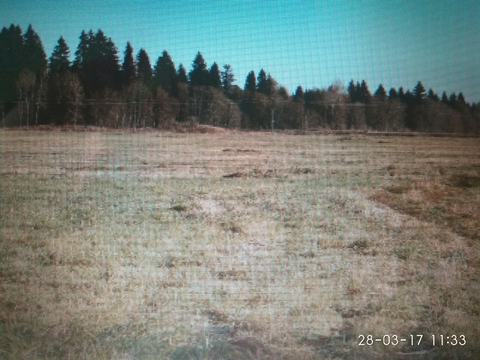 Продаются участки земли в Волосовском р-не, дир. Сельца, 150га - Фото 2