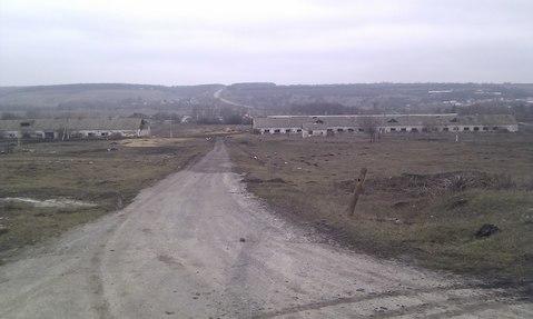 Продажа фермы в Корочанском р-не - Фото 2