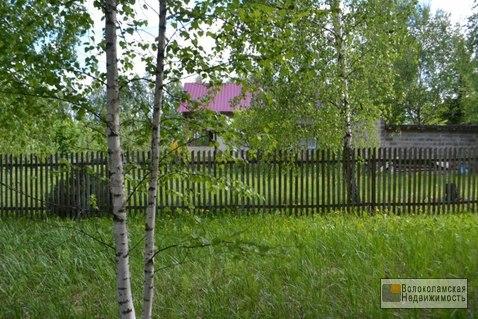 Участок 15 соток в д.Козино Волоколамского района - Фото 5