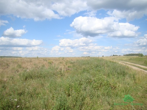 4,2 Га С/Хпроизводство в д.Ельцы - 85 км от МКАД - Фото 4