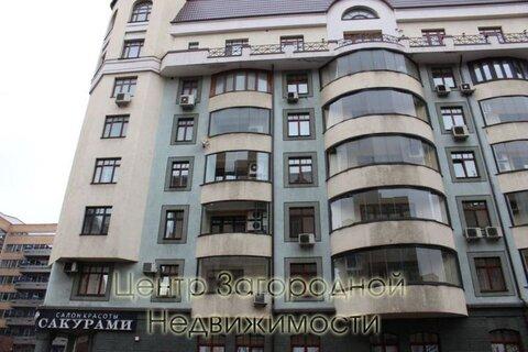 Помещение свободного назначения, Маяковская, 453 кв.м, класс A. . - Фото 2