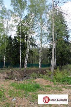 Участок у пруда и леса с лесной посадкой и личным водоемом, Киевское ш - Фото 4