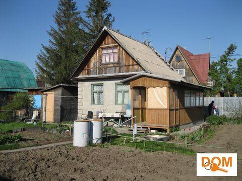 Продажа дачи, Прокудское, Коченевский район - Фото 4